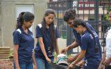 Dengue control programme by Soft Skills Development Unit